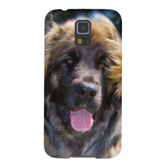 USA, California. Portrait Of Leonberger Sitting Galaxy S5 Case