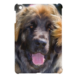 USA, California. Portrait Of Leonberger Sitting iPad Mini Covers