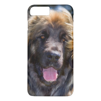 USA, California. Portrait Of Leonberger Sitting iPhone 8 Plus/7 Plus Case