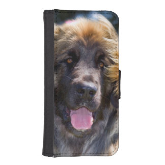 USA, California. Portrait Of Leonberger Sitting iPhone SE/5/5s Wallet Case