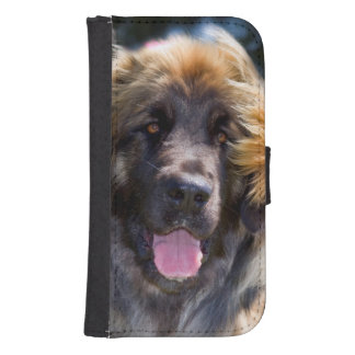 USA, California. Portrait Of Leonberger Sitting Galaxy S4 Wallet Case