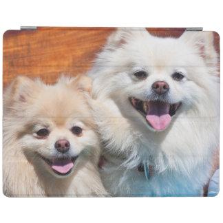 USA, California. Portrait Of Two Pomeranians iPad Cover