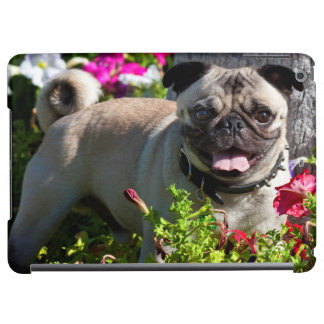 USA, California. Pug In Flower Garden