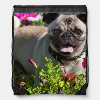 USA, California. Pug In Flower Garden Drawstring Bag