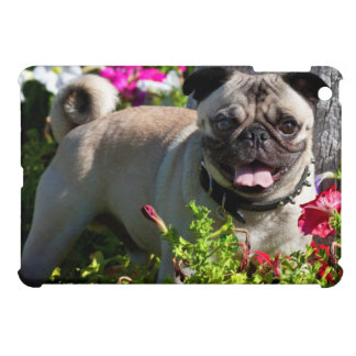 USA, California. Pug In Flower Garden iPad Mini Cover