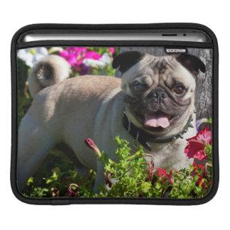 USA, California. Pug In Flower Garden iPad Sleeve
