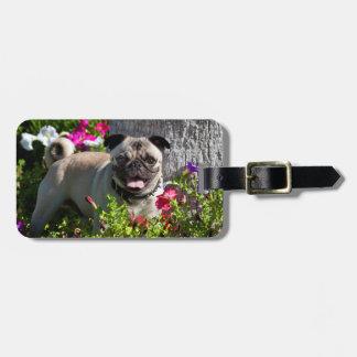 USA, California. Pug In Flower Garden Luggage Tag