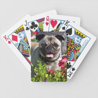 USA, California. Pug In Flower Garden Poker Deck