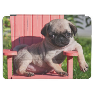 USA, California. Pug Puppy Slouching iPad Air Cover