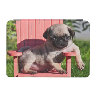 USA, California. Pug Puppy Slouching iPad Mini Cover