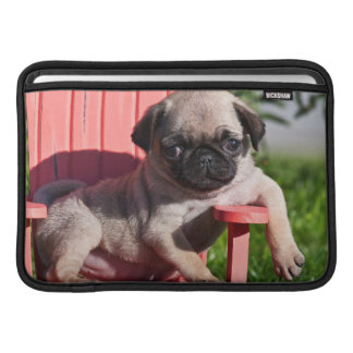 USA, California. Pug Puppy Slouching Sleeve For MacBook Air