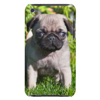 USA, California. Pug Puppy Standing In Grass iPod Touch Cases