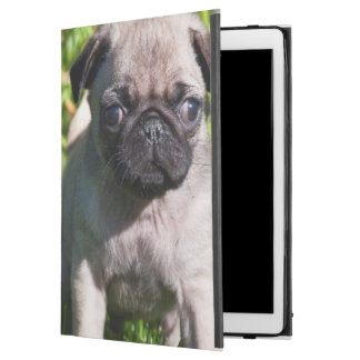"USA, California. Pug Puppy Standing In Grass iPad Pro 12.9"" Case"
