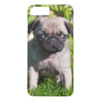 USA, California. Pug Puppy Standing In Grass iPhone 8 Plus/7 Plus Case