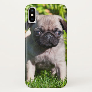 USA, California. Pug Puppy Standing In Grass iPhone X Case