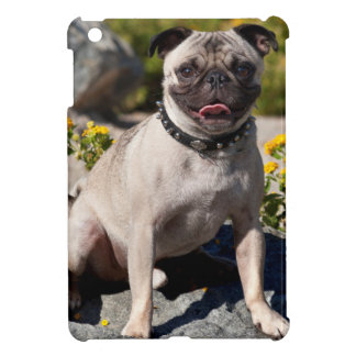 USA, California. Pug Sitting On Boulder Cover For The iPad Mini