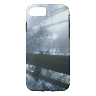USA, California, Redwood National Park, Del iPhone 7 Case