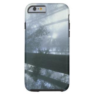 USA, California, Redwood National Park, Del Tough iPhone 6 Case