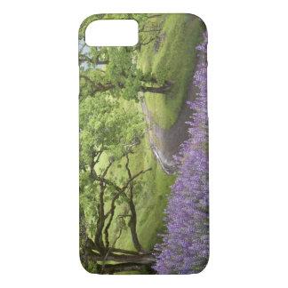 USA, California, Redwood National Park. Dirt iPhone 8/7 Case