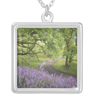 USA, California, Redwood National Park. Dirt Silver Plated Necklace