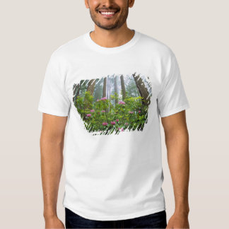 USA, California, Redwood NP. Rhododendron T Shirt