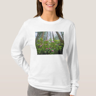 USA, California, Redwood NP. Rhododendron T-Shirt