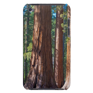 USA, California. Redwood Tree Trunks, Mariposa iPod Touch Cover