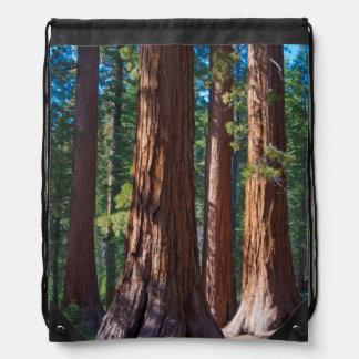USA, California. Redwood Tree Trunks, Mariposa Drawstring Bag
