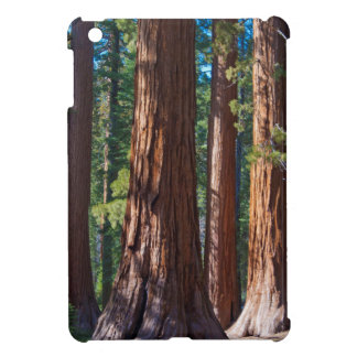 USA, California. Redwood Tree Trunks, Mariposa iPad Mini Case