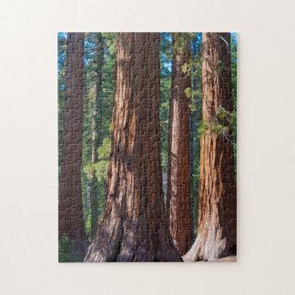 USA, California. Redwood Tree Trunks, Mariposa Jigsaw Puzzle