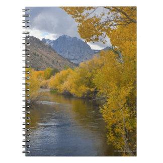 USA, California, River through Eastern Sierra Notebooks