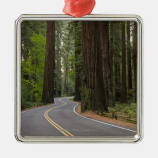 USA, California, road through Redwood forest Christmas Ornament