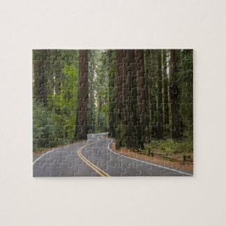 USA, California, road through Redwood forest Jigsaw Puzzle