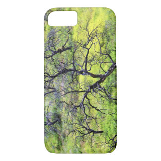 USA, California, San Diego. A burnt oak forest iPhone 7 Case