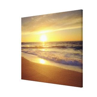 USA, California, San Diego. La Jolla Shores Stretched Canvas Prints