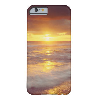 USA, California, San Diego. Sunset Cliffs beach Barely There iPhone 6 Case