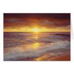 USA, California, San Diego. Sunset Cliffs beach Greeting Card