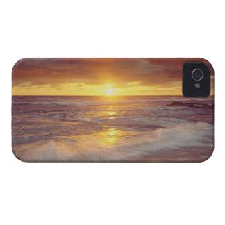 USA, California, San Diego. Sunset Cliffs beach iPhone 4 Case-Mate Case