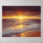 USA, California, San Diego. Sunset Cliffs beach Poster
