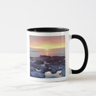 USA, California, San Diego. Sunset Cliffs tide Mug