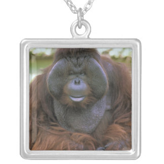 USA, California, San Diego Zoo. Captive Silver Plated Necklace