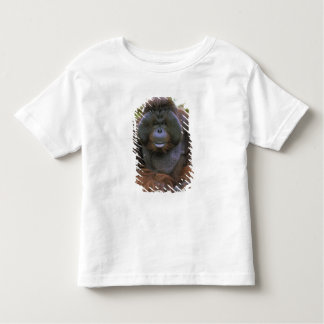 USA, California, San Diego Zoo. Captive Toddler T-Shirt
