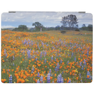 USA, California, Santa Margarita, Avenales iPad Cover