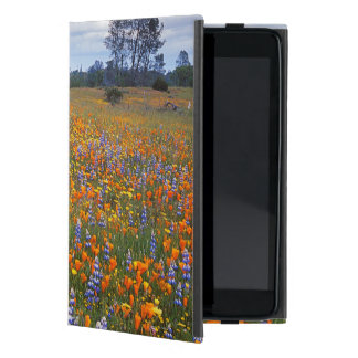 USA, California, Santa Margarita, Avenales iPad Mini Case