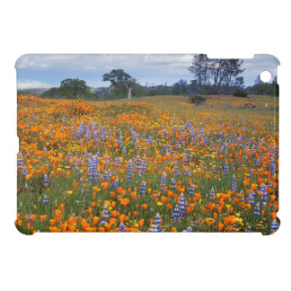 USA, California, Santa Margarita, Avenales iPad Mini Cover