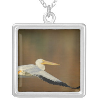 USA, California, Santee Lakes Park. White Silver Plated Necklace