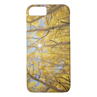 USA, California, Sierra Nevada Mountains. Fall iPhone 8/7 Case