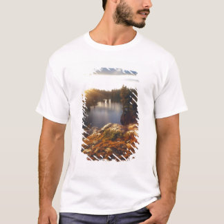 USA, California, Sierra Nevada Mountains. Sunset T-Shirt