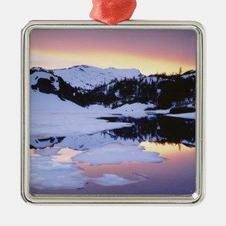 USA, California, Sierra Nevada Mountains. The Silver-Colored Square Decoration