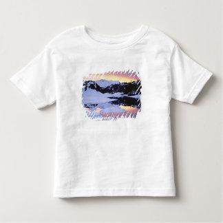 USA, California, Sierra Nevada Mountains. The Toddler T-Shirt